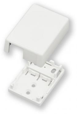 2-Module-Space-Surface-Mount-Box-CBXJ2AW-A