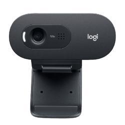 Web-Camera-Logitech-C505-HD-Webcam-960-001364